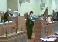 Džamila Stehlíková hovoří před senátory